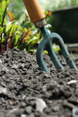 Urban Gardening — Stock Photo