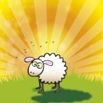 Spring Lamb — Stock Photo #2633594