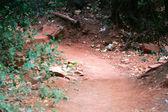 Foot Path — Stock Photo