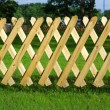 Wooden trellis, grass — Stock Photo
