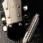 Guitar headstock and harmon — Stock Photo #2446860