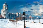 路堤的冬天 — 图库照片