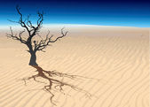 Dead tree. — Stock Vector