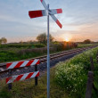 Stock Photo: Railway tracks with pastel sunset
