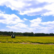 Stock Photo: Bright green agriculture farmland
