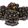 Four blackberries — Stock Photo #2371148