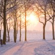 Winter sunset — Stock Photo #2373737
