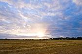 Rural sunset — Stock Photo
