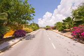 Tropical road on a sunny day — Stock Photo
