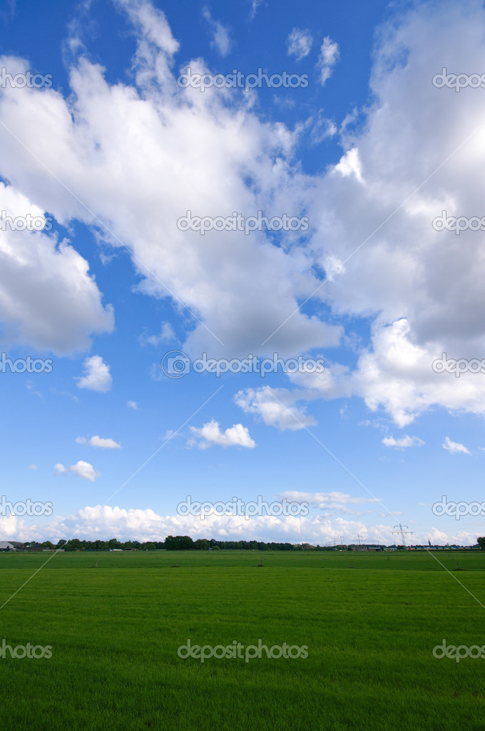 Green meadow with blue sky and clouds — Stock Photo #2372853