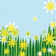 Flower meadow — Stock Vector
