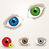 Augen — Stockvektor