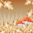 Mushrooms in the forest - Stock Vector