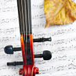 Violin music classic string instrument — Stock Photo