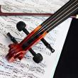 Violin music classic string instrument — Stock Photo