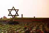 Jewish star in cemetery in Terezin — Stock Photo