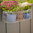 Balcony flower basket - Stock Photo