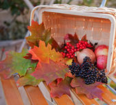 Basket with autumn leafs and berries — Stock Photo