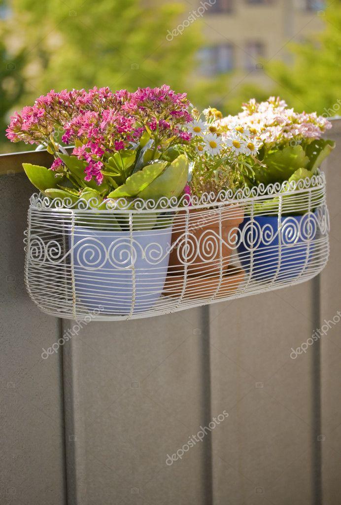 Балкон цветочная корзина - стоковое фото feferoni #2342757.