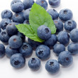 Stock Photo: Organic blueberries