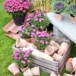 Garden pots — Stock Photo #2458322