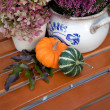 Garden still life in autumn — Stockfoto