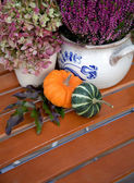 Garden still life in autumn — Stock Photo