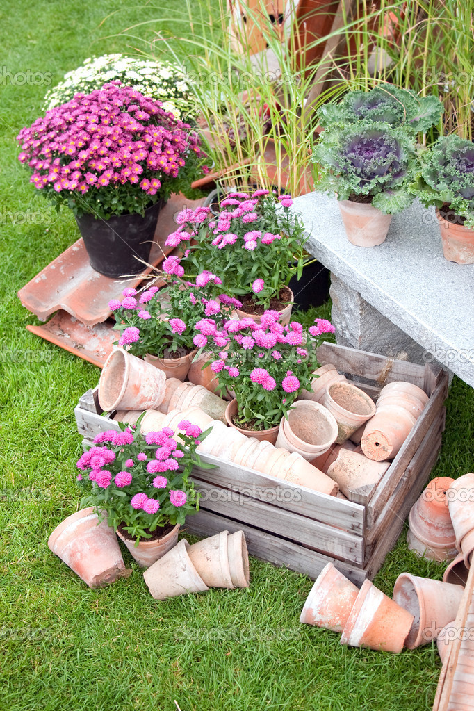 Mish mash garden items standing outside — Stock Photo #2458322
