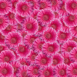 Stock Photo: Pink GerberDaisy collage