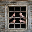 Hands behind prison bars — Stock Photo