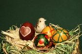 Bird in easter eggs nest — Stock Photo