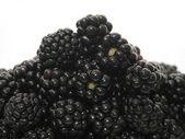 Blackberry hill — Stock Photo