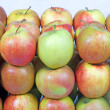 Group of apples in row — Stock Photo #2556533