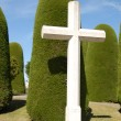 Stock Photo: Big Cross in Puntarenas cemetery, chil