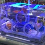 incubadora médica — Foto de Stock