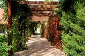 Paradiesgarten — Stockfoto