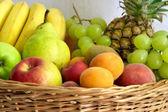 Fruits gathering — Stock Photo