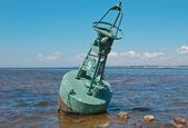 Buyo na costa de mar — Foto Stock