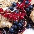 Blueberry scones — Stock Photo
