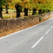Stock Photo: Country road