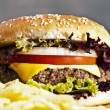 Hamburger — Stock Photo #2337965