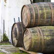 Wine barrels — Stock Photo #2339243
