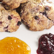 Blueberry scones — Foto Stock