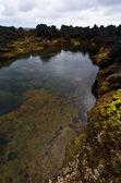 Naturliga havet vatten pool på biscoitos i azorerna — Stockfoto