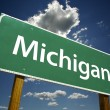 Michigan Road Sign — Stock Photo