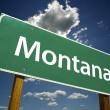 Montana Green Road Sign — Stock Photo