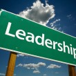 Leadership Road Sign — Stockfoto