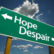 Stock Photo: Hope, Despair Green Road Sign