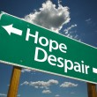 Hope, Despair Green Road Sign — Stock Photo