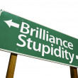 Stock Photo: Brilliance, Stupidity Green Road Sign